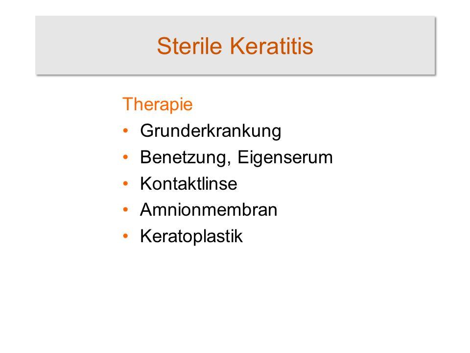 Sterile Keratitis Therapie Grunderkrankung Benetzung, Eigenserum Kontaktlinse Amnionmembran Keratoplastik