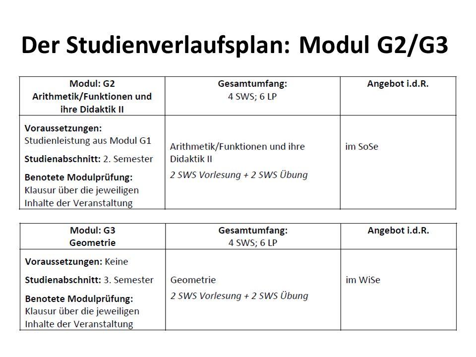 Der Studienverlaufsplan: Modul G2/G3