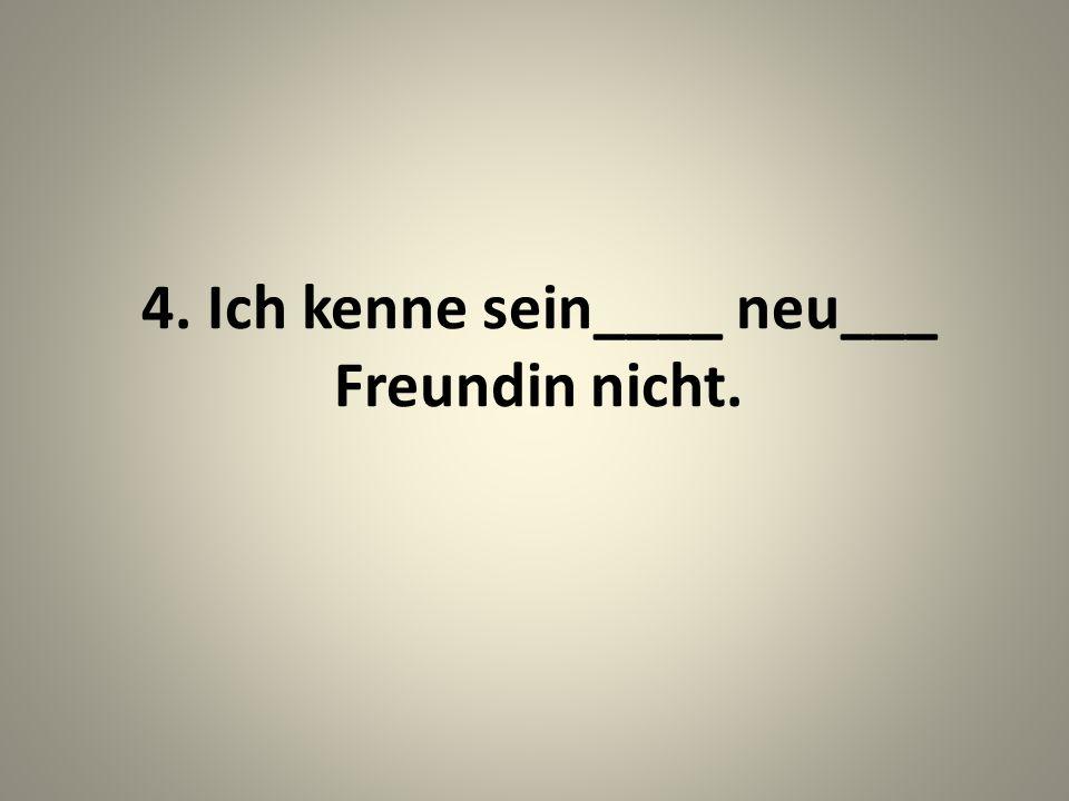 4. Ich kenne sein____ neu___ Freundin nicht.