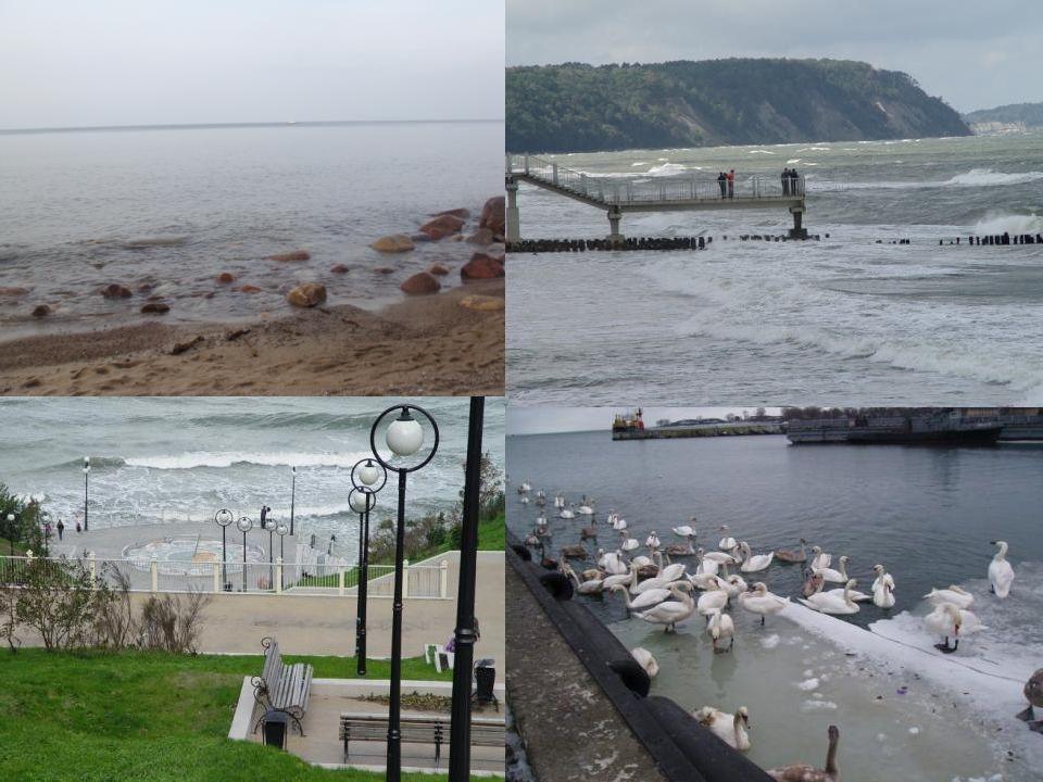 Hier gibt es einigen Sportsaale und das Hauptschwimmbad.