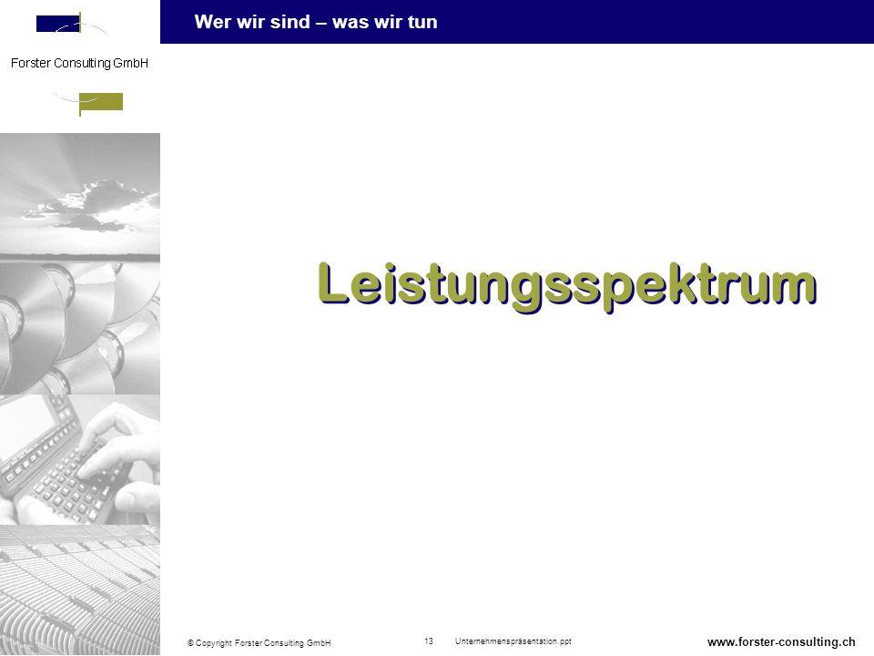 Wer wir sind – was wir tun © Copyright Forster Consulting GmbH 13 Unternehmenspräsentation.ppt www.forster-consulting.ch Leistungsspektrum