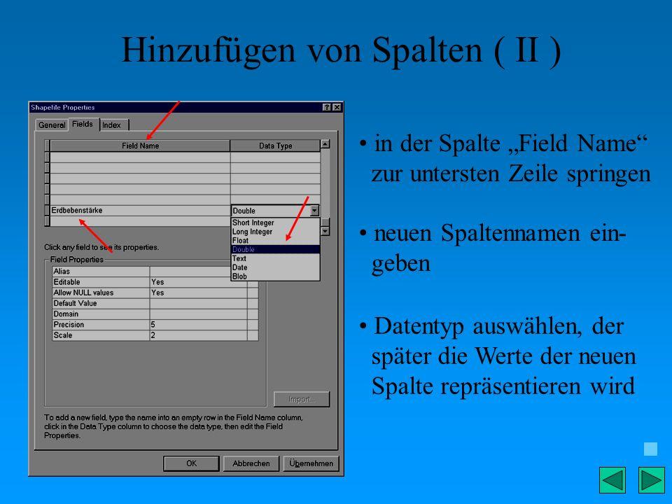 Hinzufügen von Spalten ( II ) in der Spalte Field Name zur untersten Zeile springen neuen Spaltennamen ein- geben Datentyp auswählen, der später die W