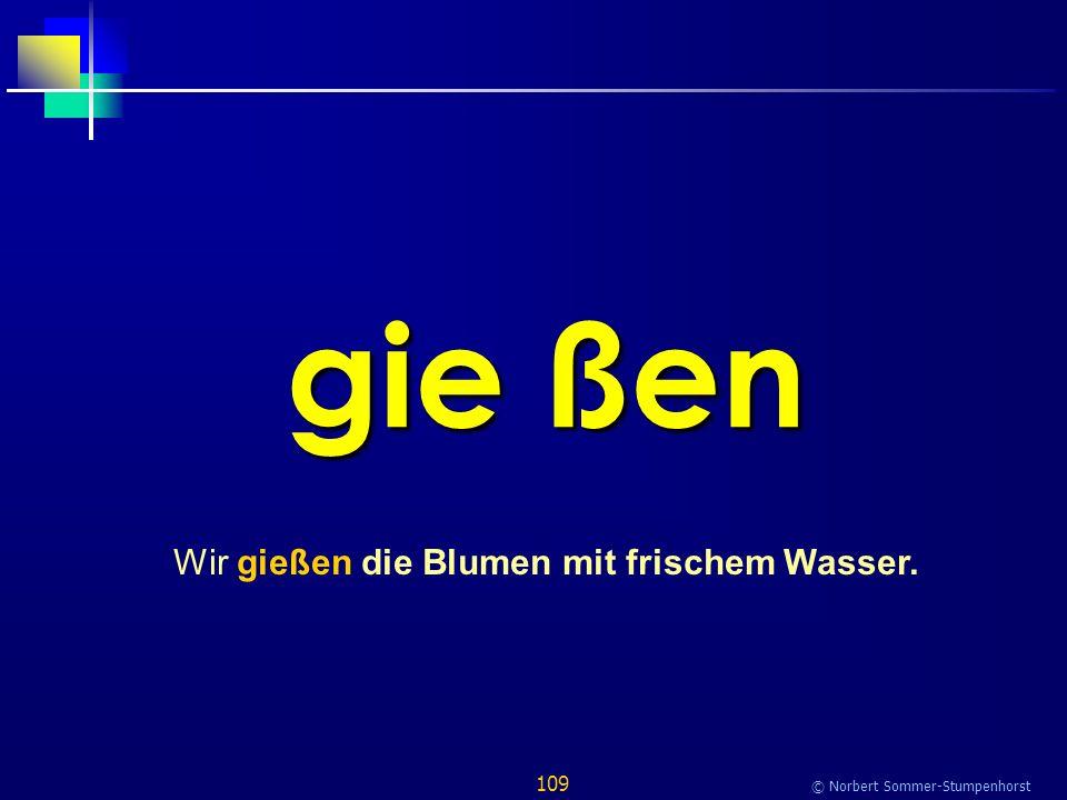 109 © Norbert Sommer-Stumpenhorst gie ßen Wir gießen die Blumen mit frischem Wasser.