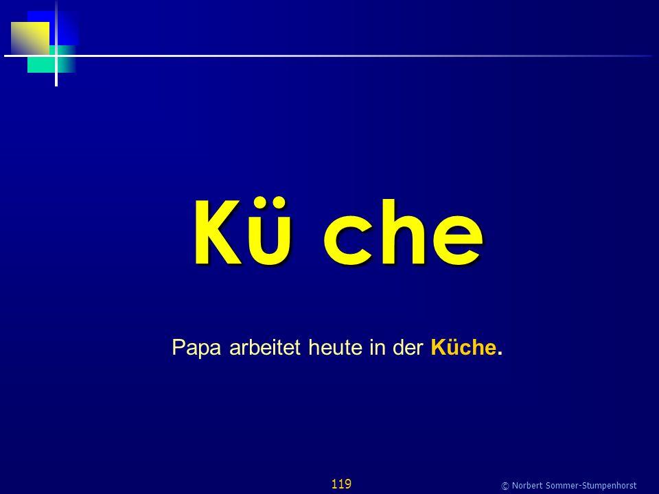 119 © Norbert Sommer-Stumpenhorst Kü che Papa arbeitet heute in der Küche.