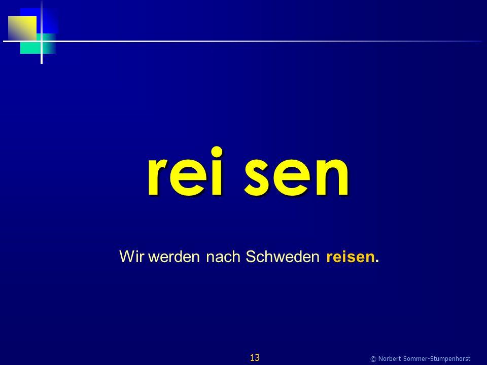 13 © Norbert Sommer-Stumpenhorst rei sen Wir werden nach Schweden reisen.