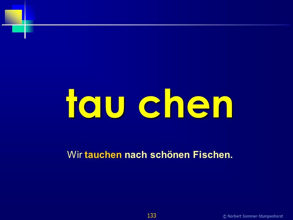 133 © Norbert Sommer-Stumpenhorst tau chen Wir tauchen nach schönen Fischen.