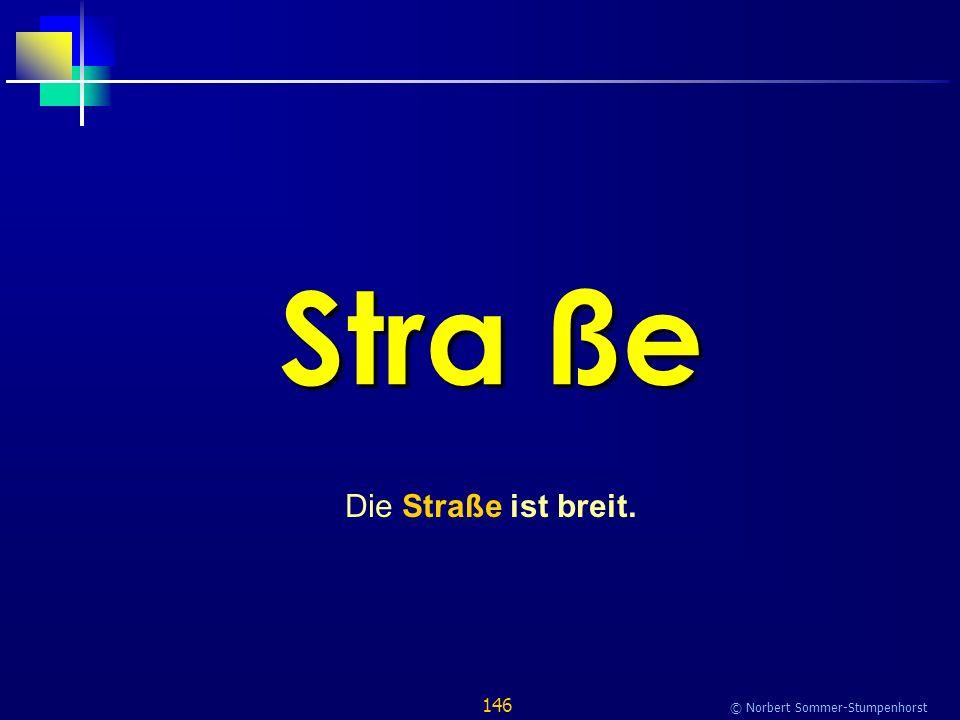 146 © Norbert Sommer-Stumpenhorst Stra ße Die Straße ist breit.