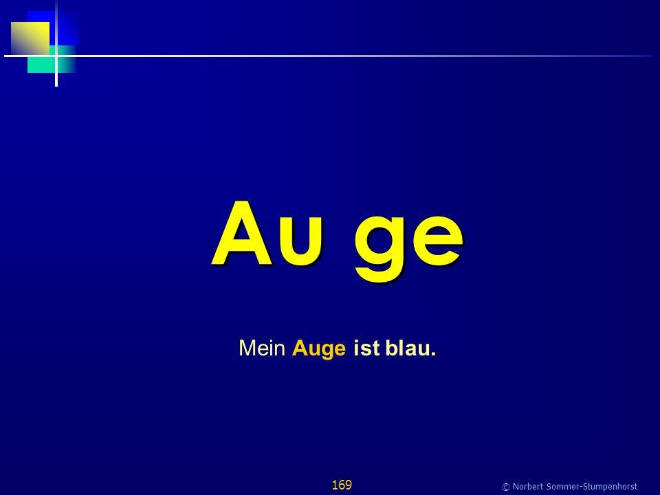 169 © Norbert Sommer-Stumpenhorst Au ge Mein Auge ist blau.
