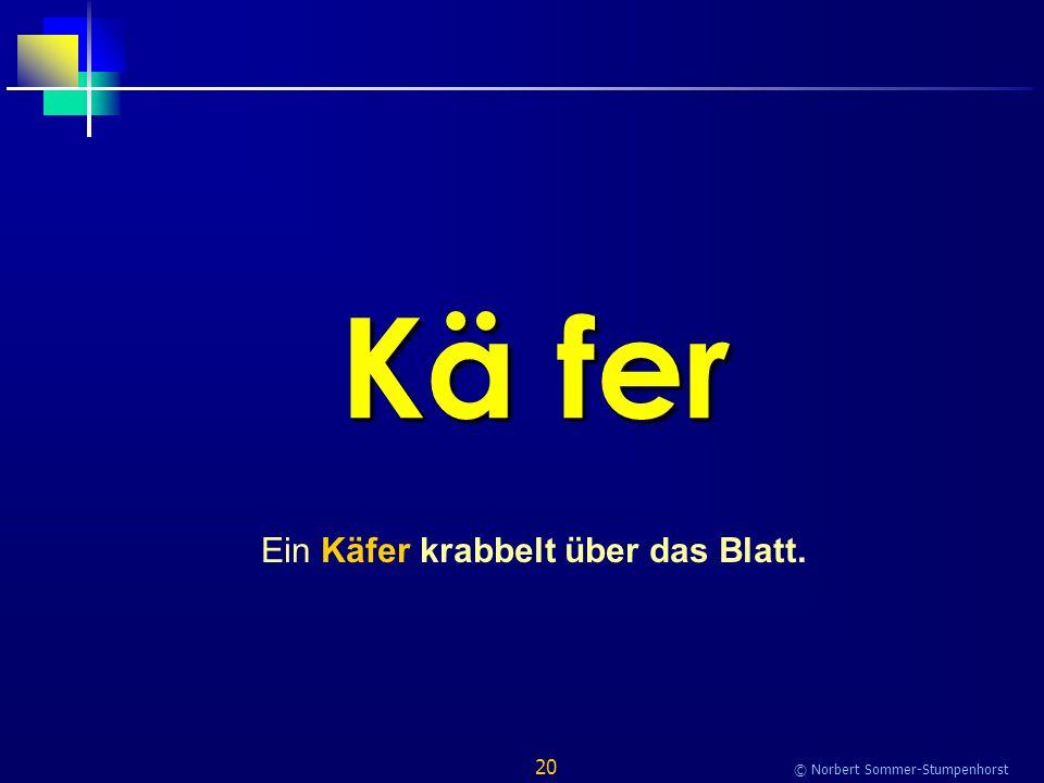20 © Norbert Sommer-Stumpenhorst Kä fer Ein Käfer krabbelt über das Blatt.