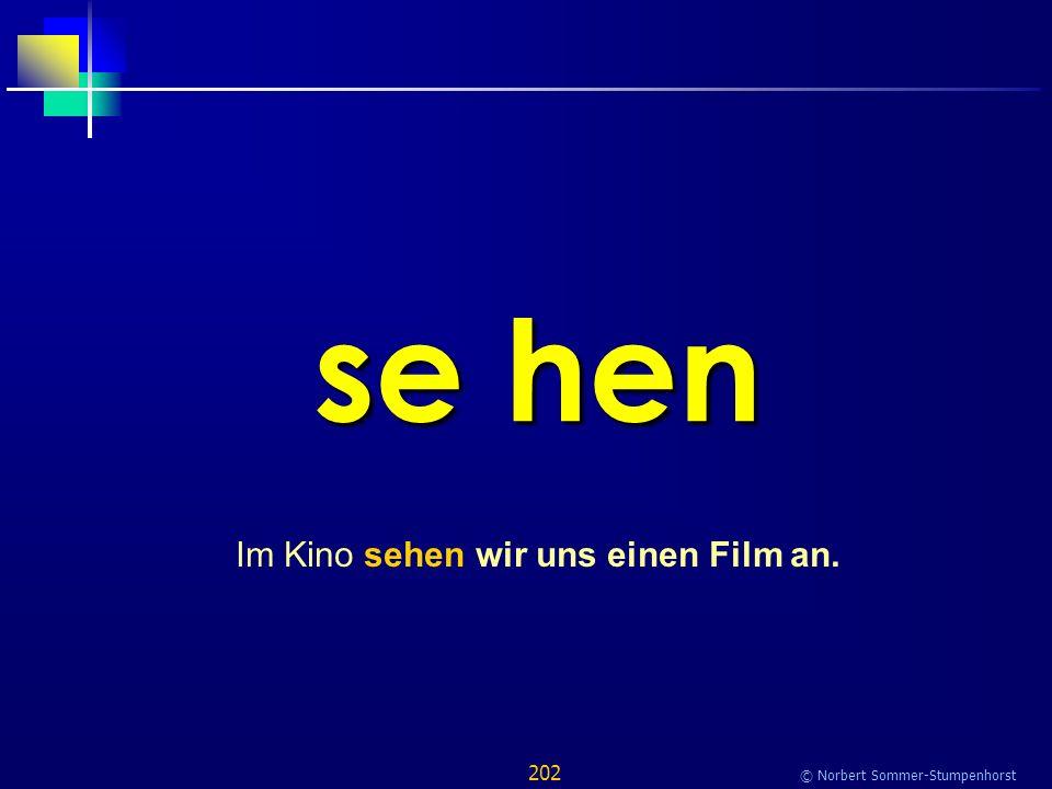 202 © Norbert Sommer-Stumpenhorst se hen Im Kino sehen wir uns einen Film an.