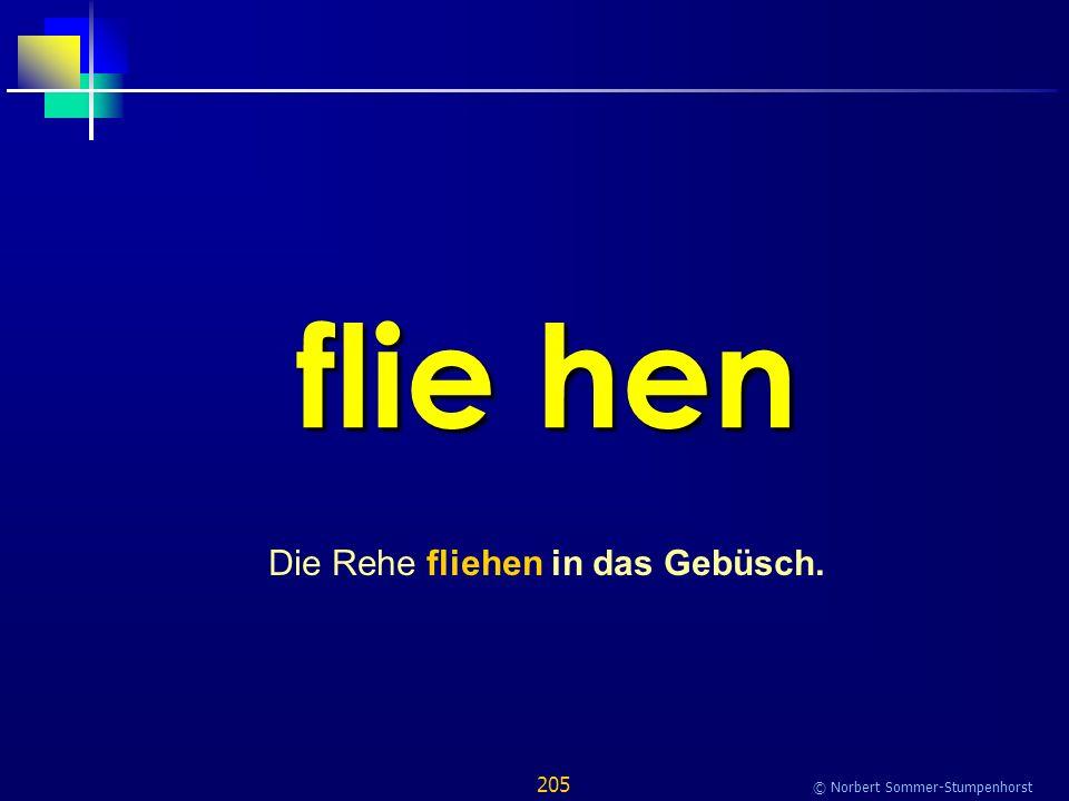 205 © Norbert Sommer-Stumpenhorst flie hen Die Rehe fliehen in das Gebüsch.