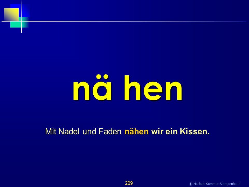 209 © Norbert Sommer-Stumpenhorst nä hen Mit Nadel und Faden nähen wir ein Kissen.