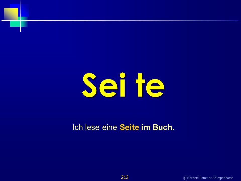 213 © Norbert Sommer-Stumpenhorst Sei te Ich lese eine Seite im Buch.