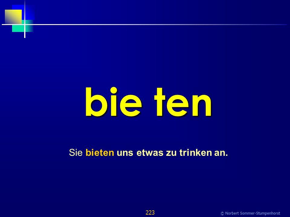 223 © Norbert Sommer-Stumpenhorst bie ten Sie bieten uns etwas zu trinken an.