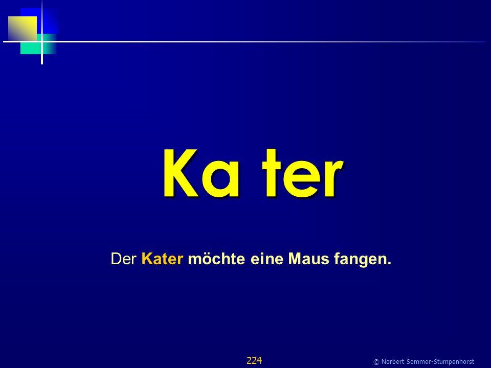 224 © Norbert Sommer-Stumpenhorst Ka ter Der Kater möchte eine Maus fangen.