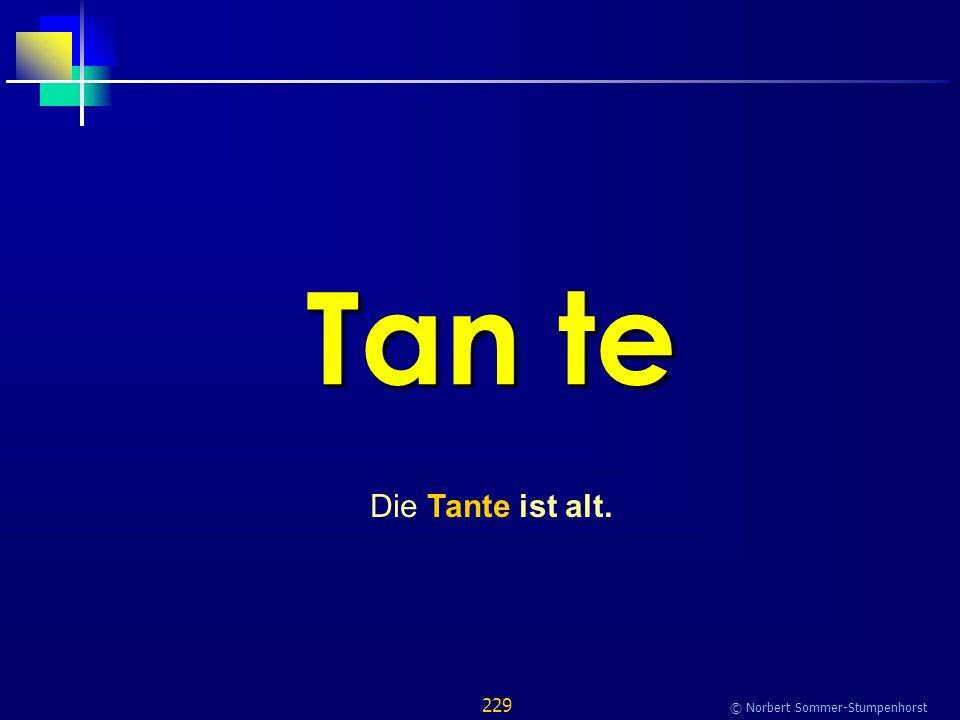 229 © Norbert Sommer-Stumpenhorst Tan te Die Tante ist alt.