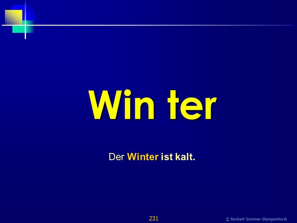 231 © Norbert Sommer-Stumpenhorst Win ter Der Winter ist kalt.