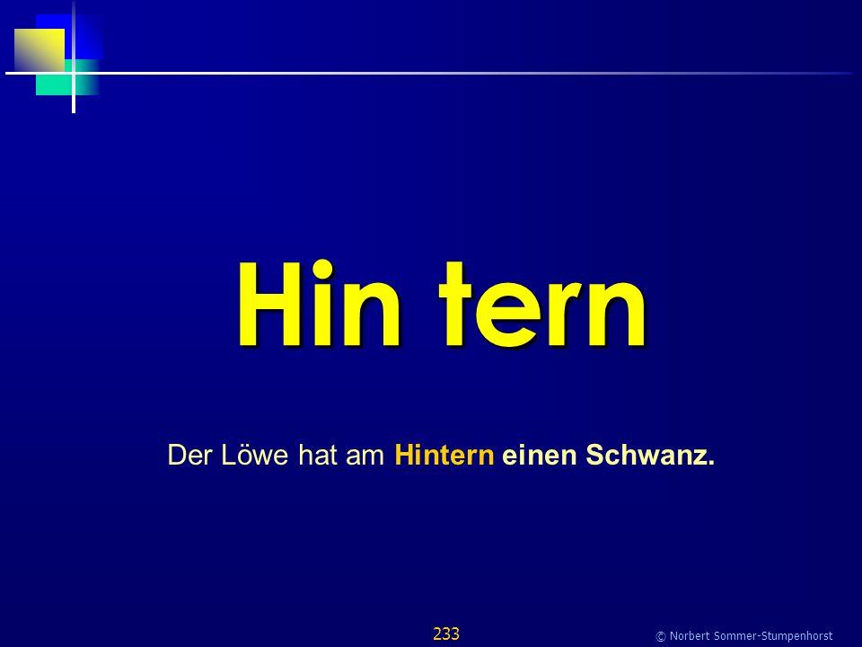 233 © Norbert Sommer-Stumpenhorst Hin tern Der Löwe hat am Hintern einen Schwanz.