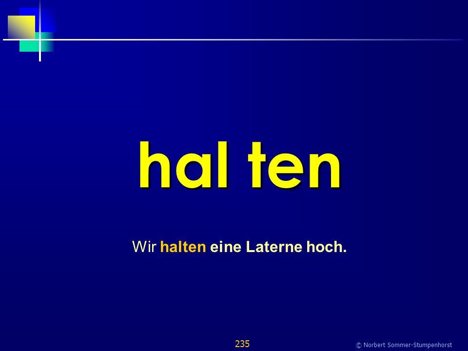 235 © Norbert Sommer-Stumpenhorst hal ten Wir halten eine Laterne hoch.