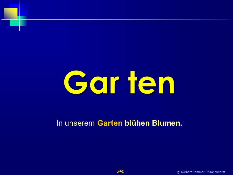 240 © Norbert Sommer-Stumpenhorst Gar ten In unserem Garten blühen Blumen.