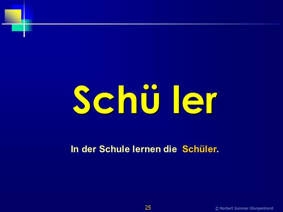 25 © Norbert Sommer-Stumpenhorst Schü ler In der Schule lernen die Schüler.