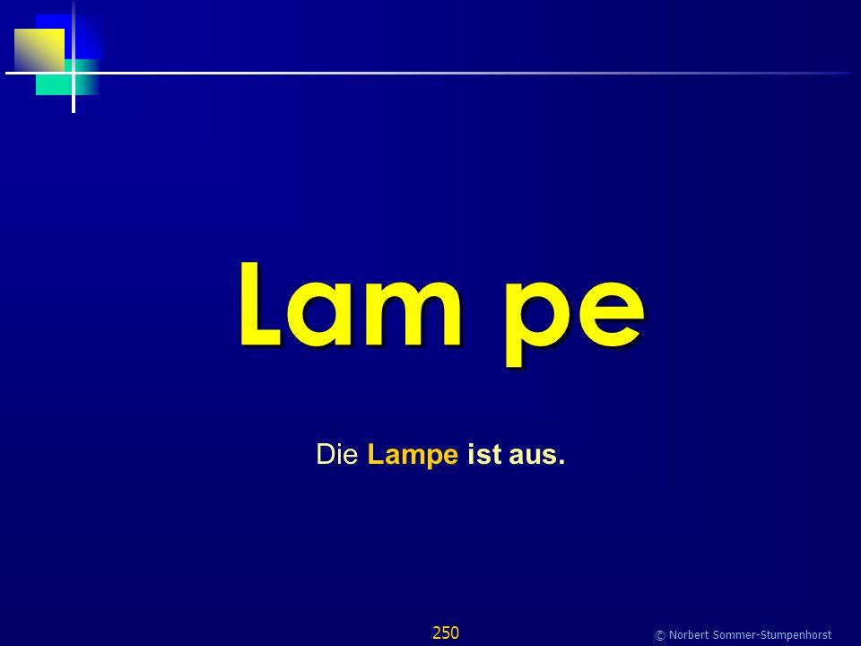 250 © Norbert Sommer-Stumpenhorst Lam pe Die Lampe ist aus.