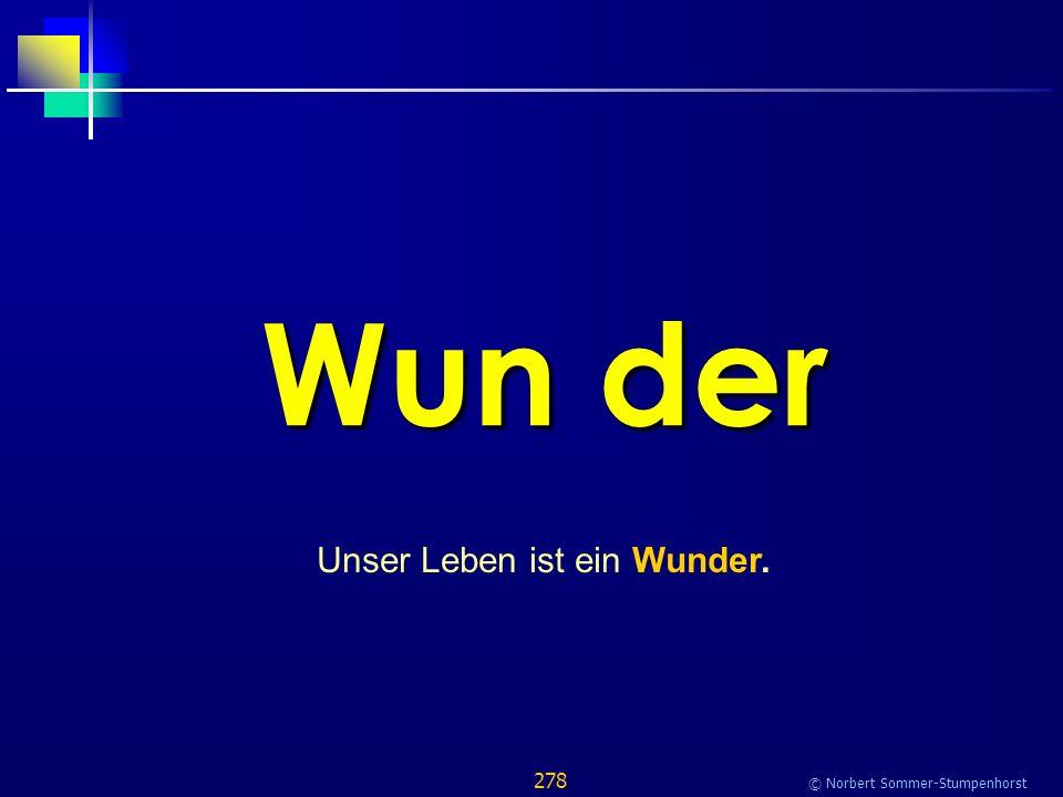 278 © Norbert Sommer-Stumpenhorst Wun der Unser Leben ist ein Wunder.