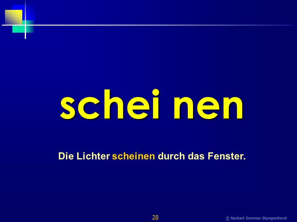 28 © Norbert Sommer-Stumpenhorst schei nen Die Lichter scheinen durch das Fenster.