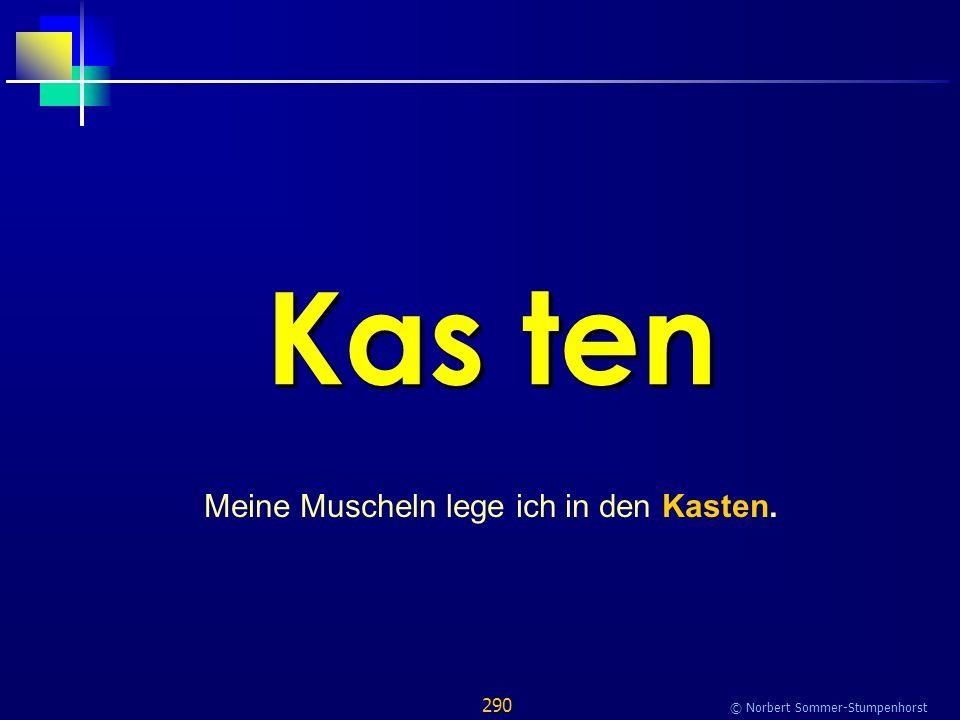 290 © Norbert Sommer-Stumpenhorst Kas ten Meine Muscheln lege ich in den Kasten.