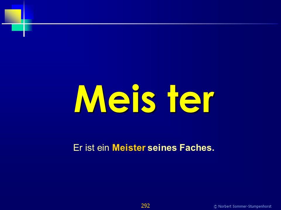 292 © Norbert Sommer-Stumpenhorst Meis ter Er ist ein Meister seines Faches.