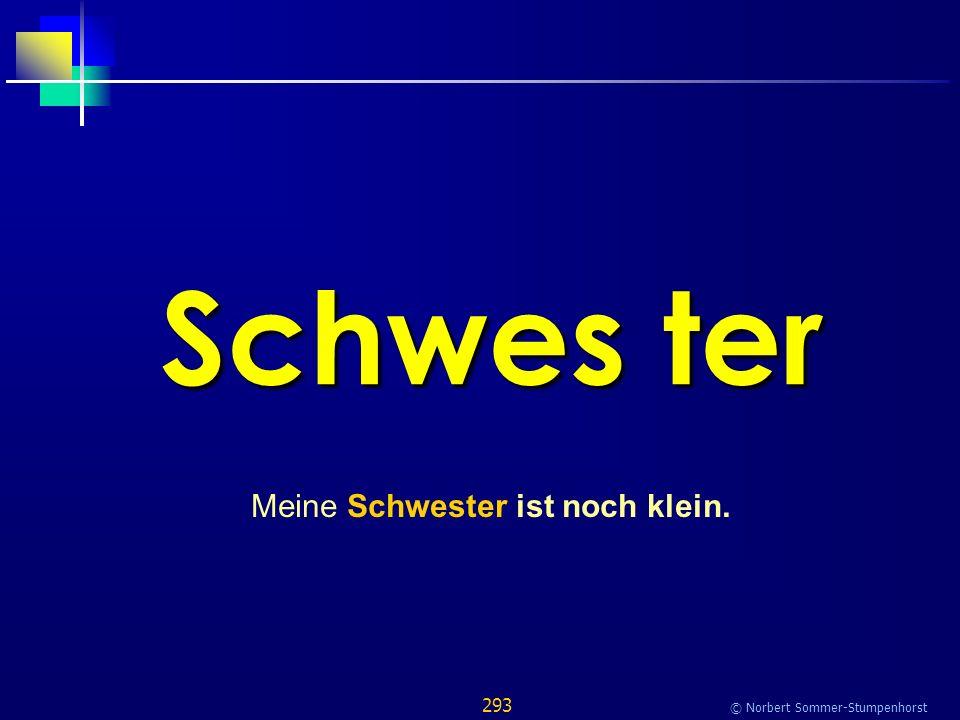 293 © Norbert Sommer-Stumpenhorst Schwes ter Meine Schwester ist noch klein.
