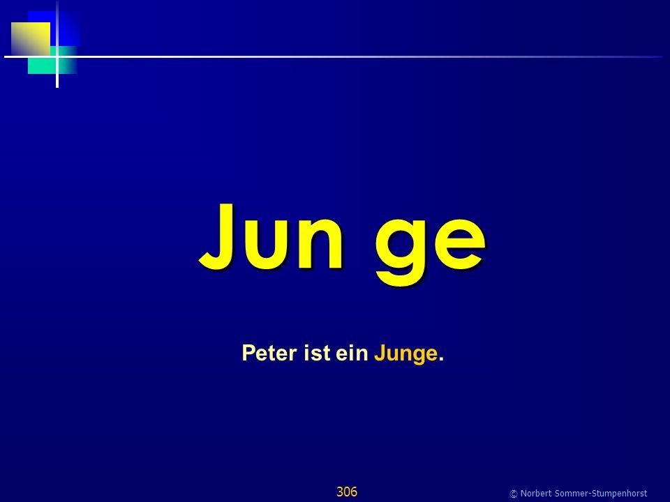 306 © Norbert Sommer-Stumpenhorst Jun ge Peter ist ein Junge.