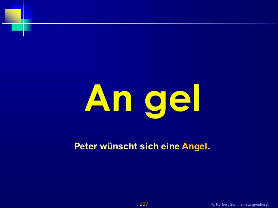307 © Norbert Sommer-Stumpenhorst An gel Peter wünscht sich eine Angel.