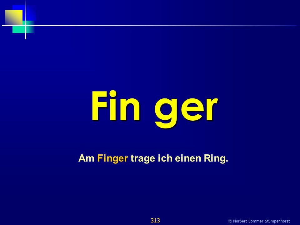 313 © Norbert Sommer-Stumpenhorst Fin ger Am Finger trage ich einen Ring.