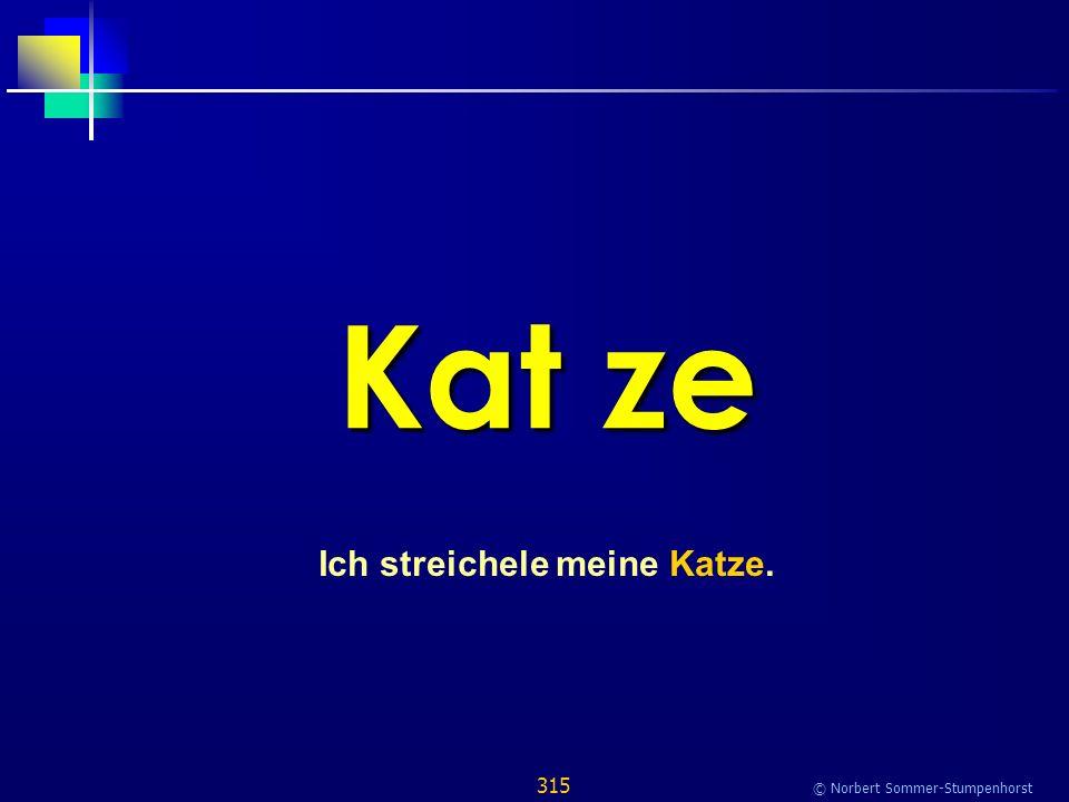 315 © Norbert Sommer-Stumpenhorst Kat ze Ich streichele meine Katze.