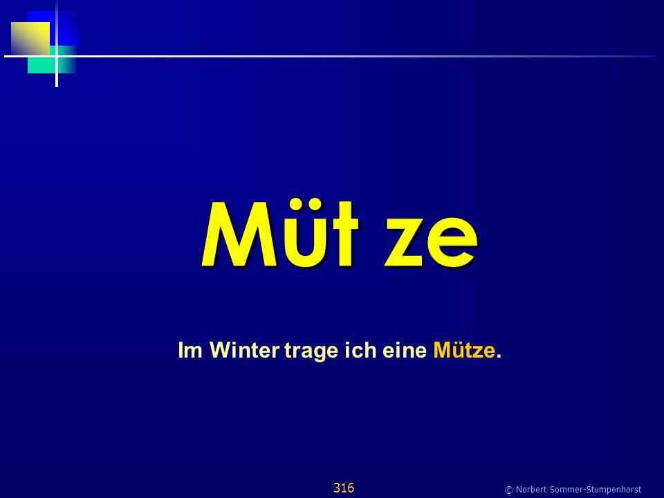 316 © Norbert Sommer-Stumpenhorst Müt ze Im Winter trage ich eine Mütze.