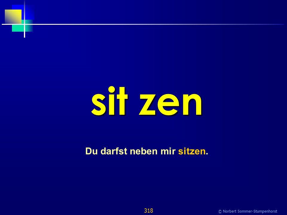 318 © Norbert Sommer-Stumpenhorst sit zen Du darfst neben mir sitzen.