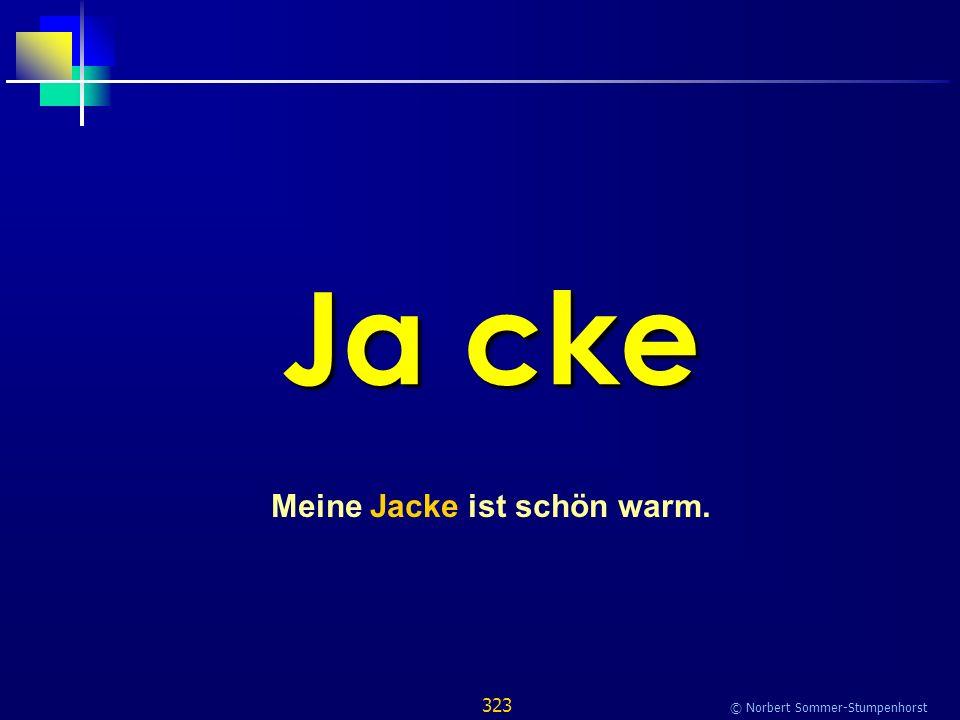 323 © Norbert Sommer-Stumpenhorst Ja cke Meine Jacke ist schön warm.