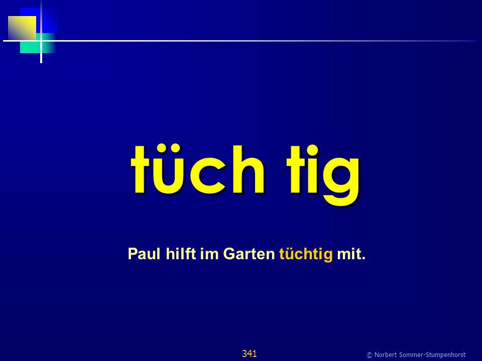 341 © Norbert Sommer-Stumpenhorst tüch tig Paul hilft im Garten tüchtig mit.