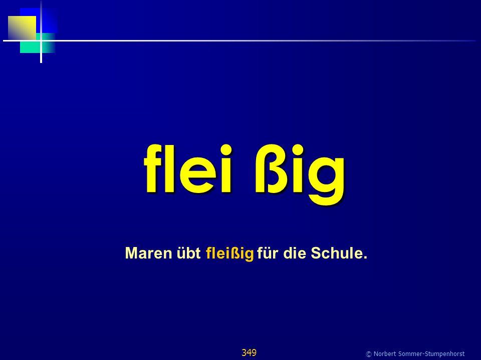 349 © Norbert Sommer-Stumpenhorst flei ßig Maren übt fleißig für die Schule.