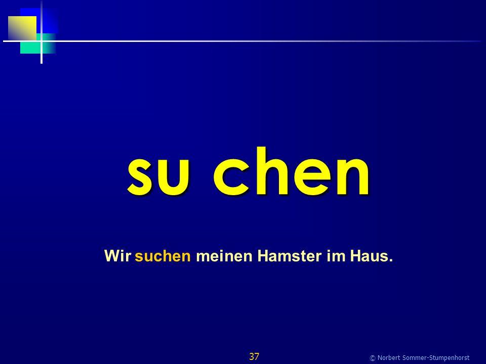 37 © Norbert Sommer-Stumpenhorst su chen Wir suchen meinen Hamster im Haus.