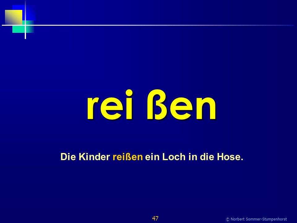 47 © Norbert Sommer-Stumpenhorst rei ßen Die Kinder reißen ein Loch in die Hose.