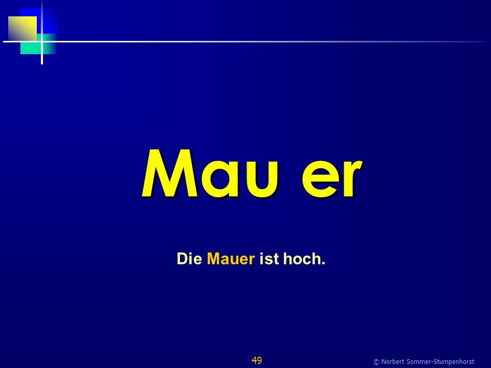 49 © Norbert Sommer-Stumpenhorst Mau er Die Mauer ist hoch.