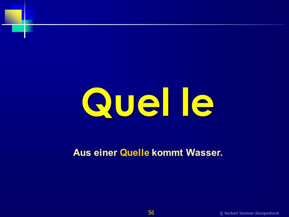 56 © Norbert Sommer-Stumpenhorst Quel le Aus einer Quelle kommt Wasser.