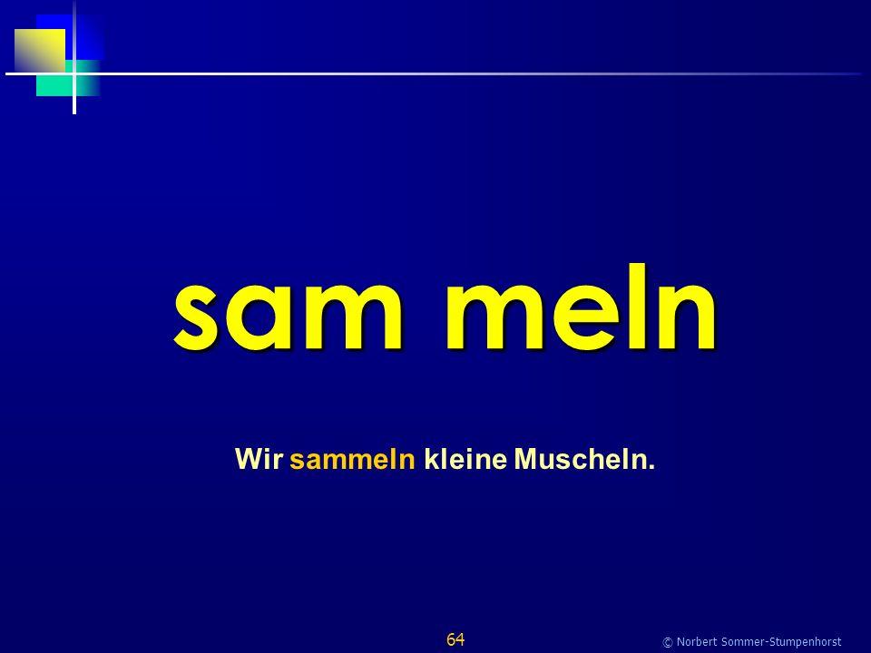64 © Norbert Sommer-Stumpenhorst sam meln Wir sammeln kleine Muscheln.