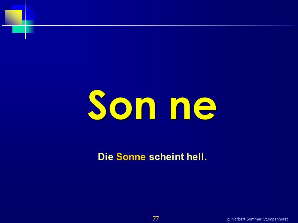77 © Norbert Sommer-Stumpenhorst Son ne Die Sonne scheint hell.