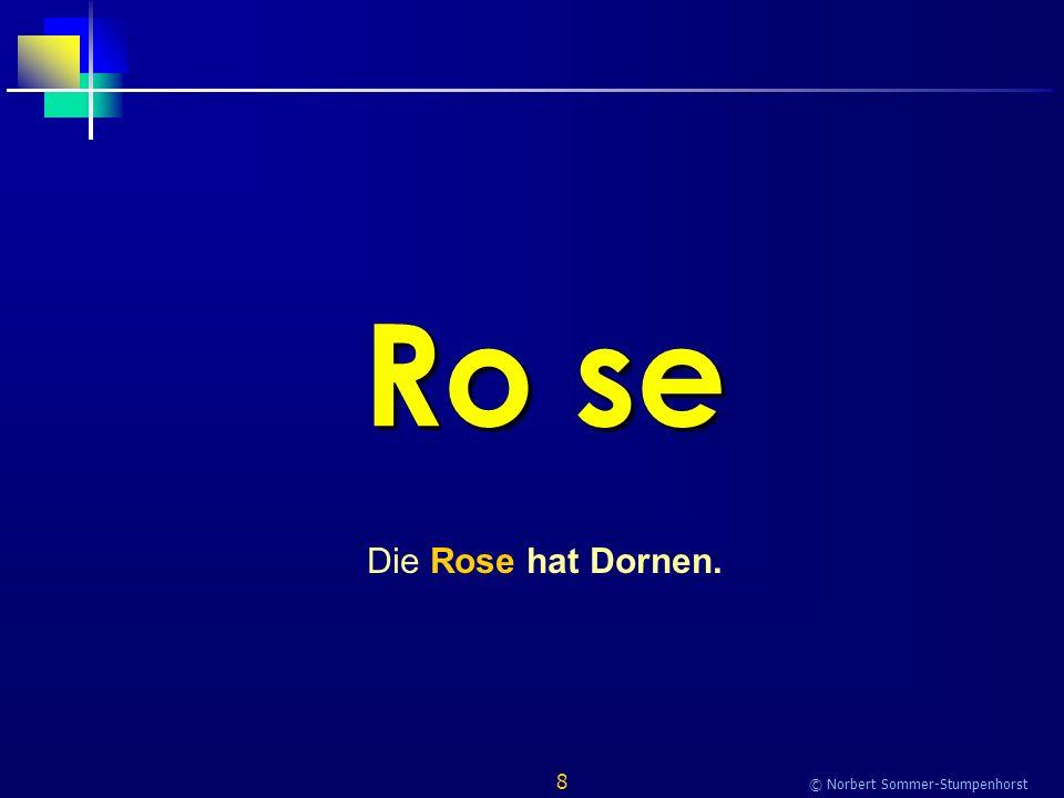 8 © Norbert Sommer-Stumpenhorst Ro se Die Rose hat Dornen.