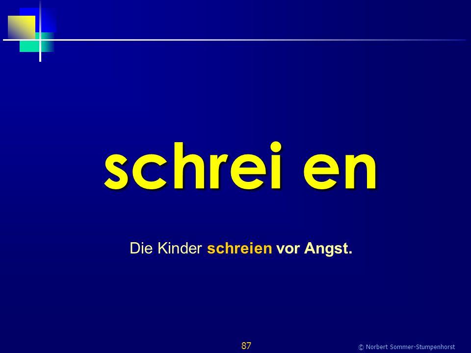 87 © Norbert Sommer-Stumpenhorst schrei en Die Kinder schreien vor Angst.