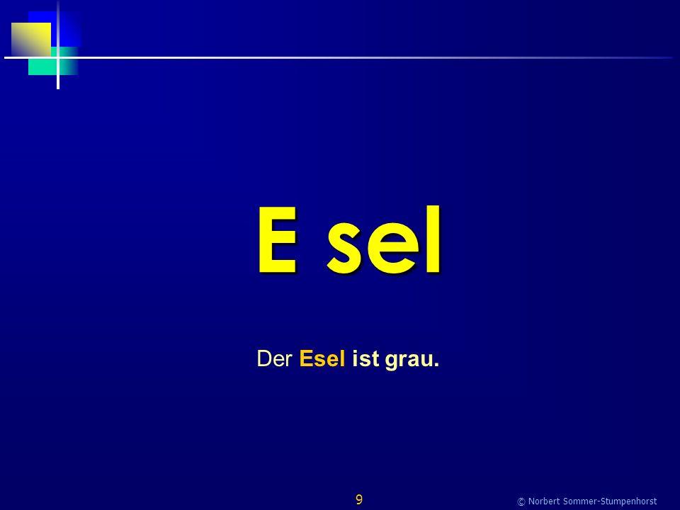 9 © Norbert Sommer-Stumpenhorst E sel Der Esel ist grau.