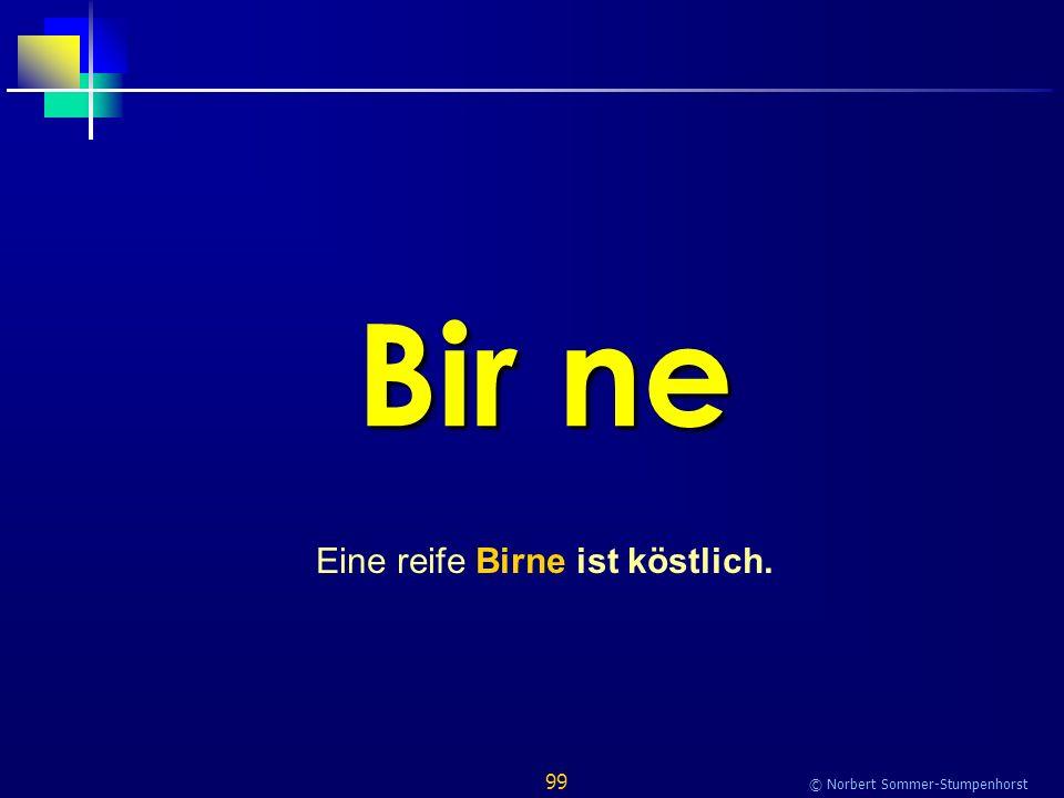 99 © Norbert Sommer-Stumpenhorst Bir ne Eine reife Birne ist köstlich.